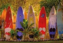Фотообои 8-902 Maui